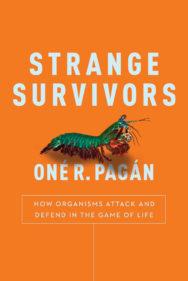 strange-survivors